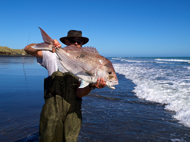 February 2013: A snapper landed by Brent Rolston at Waverley, South Taranaki, New Zealand. The fish was subsequently released. We estimated its weight at 7 kilograms.